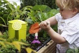 main image - toddler tending a garden2